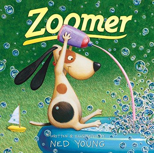 Zoomer PDF