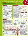 Lerntafel: Pflanzenphysiologie im �be...