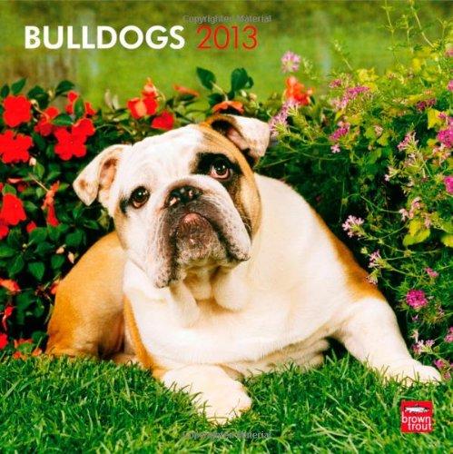Bulldogs 2013 Square 12X12 Wall Calendar