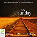 One Sunday Audiobook by Joy Dettman Narrated by Diedre Rubenstein