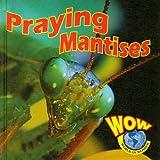 img - for Praying Mantises (World of Wonder) book / textbook / text book