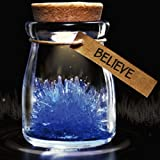 Golandstar DIY Growing Crystal Glasses Wish Bottle Jar Powder LED Mood Light Lamp Wishing Vial Flower (Blue) (Color: Blue)