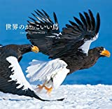 世界のかっこいい鳥