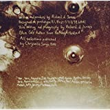 Selected Ambient Works Volume 2