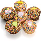 Birthday Belgian Chocolate Gourmet Cupcakes- 6 Pack