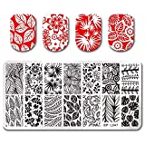 Summer Fruit Nail Art Stamping Template Tropical Punch Pattern Rectangle Image Plate Stamping Polish Needed BP-L047 (Color: BP-L047)