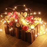 Dailyart 120 Warm White Leds on a Flexible Ultra-thin Copper Wire, 16.4ft--ideal for Xmas New Year Birthday Party, Wedding Decoration, Bar Decor