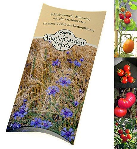 saatgut-set-bio-tomaten-4-robuste-alte-gourmet-sorten-in-bio-qualitat-je-10-samen-in-schoner-geschen