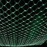 JIAEN String Lights 60*60