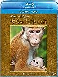 ディズニーネイチャー/サルの王国とその掟 ブルーレイ+DVDセット [Blu-ray]