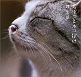 Chotto Nekoboke (A Little Time Spent with Cats) [In Japanese]