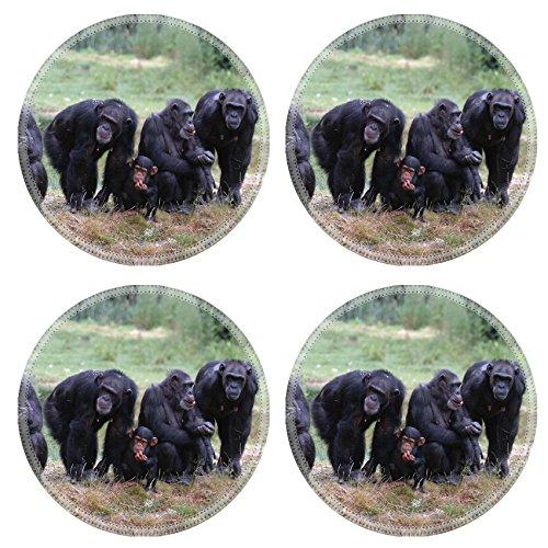 Luxlady Round Coaster When Monkey s Go Bad IMAGE ID 221188