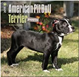 American Pit Bull Terriers 2015 18-Month Calendar