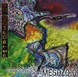 Petrophonics by Birdsongs of Mesozoic (2000-09-19)