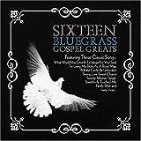 echange, troc Various Artists - Sixteen Bluegrass Gospel Greats