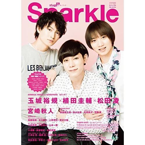 Sparkle vol.25 (メディアボーイMOOK)
