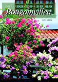 Brighten Up Your Life With Bougainvillea
