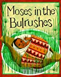 Moses in the Bulrushes (Bible Stories (Paperback Franklin Watts)) (0531153878) by Mayo, Diana