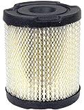 Rotary # 6515 Air Filter For Tecumseh # 34782A
