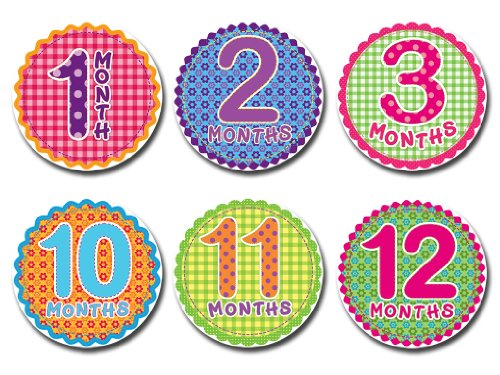 Sticky Bellies - Sticky Bellies Monthly Milestone Stickers - Oh Sew Adorable 1-12 Months
