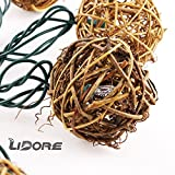 LIDORE Brown Rattan Balls String Light Set of 10 warm white light for christmas wedding garden Patio and party Incandescent