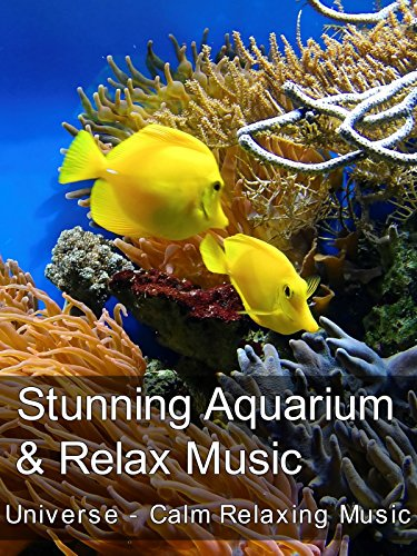 Stunning Aquarium & Relax Music