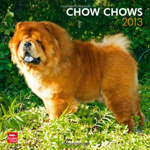 Chow Chows 2013 Square 12X12 Wall Calendar
