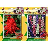 Airex Salvia And Larkspur Fire Mixed Flower Seeds ( Pack Of 30 Seeds Per Packet)