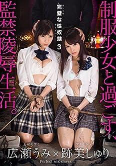 完璧な性奴隷 3 [DVD]