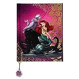 Ariel and Ursula Fairytale Journal Disney Fairytale Designer Collection (Color: pink, Tamaño: 8