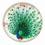 Nature Under Glass Paperweights (Peacock)