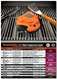 Grillbots Grillbot Robot Grill Cleaner (Orange Color) + Meathead Original Temperature magnet guide