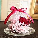 TEATSIGHT(ティートサイト) 母の日ギフト プリザーブドフラワー ギフト 枯れないお花 「ガラスポット入り カーネーション」【ピンク】