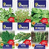Omaxe Herbs Collection - 6 packets