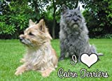Cairn Terrier Mouse Mat, I Love Cairn terriers