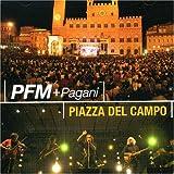Piazza Del Campo: Live in Siena