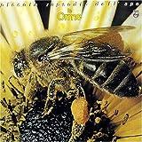 Piccola Rapsodia Dell Ape by Mercury Italy (1997-07-08)