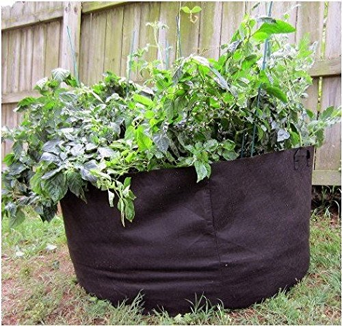 Mr. garden 50Gal Fabric Aeration Grow Bag, with Sturdy Handles, Removable Garden (30 Gallon Smart Pot With Handles compare prices)