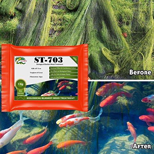 pond-algae-control-hydra-st703-1kg-treats-up-to-20000-litres-resistant-filamentous-algae-control-tre