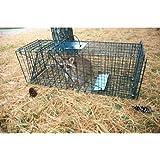 Pet Trex Live Animal Pet Trap/Cage, Green