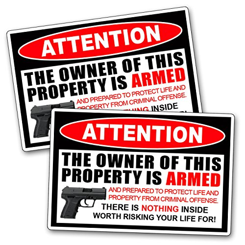 Second 2nd Amendment Handgun Pistol Warning Decal Sticker Gun (Gun Decals compare prices)
