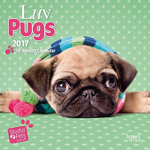 luv-pugs-studio-pets-2017-mini-wall-calendar