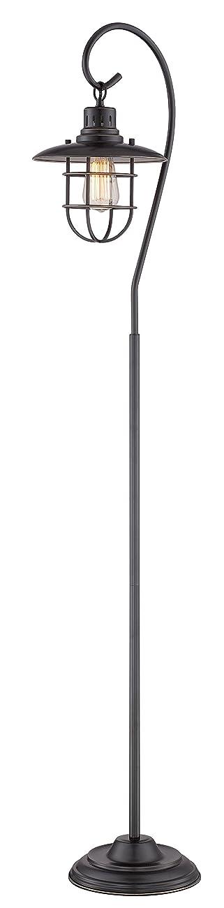 Lite Source Floor Lamps Ls-81456D/Brz Lanterna Ii Floor Lamp, Dark Bronze 0