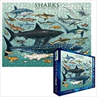 Shark 1000 Piece Jigsaw Puzzle Eurographics