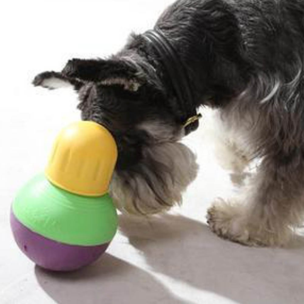 Interactive Dog Toy  Pounds