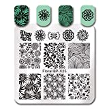 Summer Fruit Nail Art Stamping Template Tropical Punch Pattern Rectangle Image Plate Stamping Polish Needed BP-X25 (Color: BP-X25)