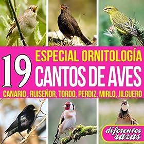 Amazon.com: 19 Cantos de Aves. Especial Ornitología