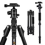 K&F Concept Ultra Compact and Lightweight Aluminum Travel Tripod with Monpod,360° Panorama Ball Head Compatible with Canon Nikon DSLR Cameras (Tamaño: Ball Head Tripod)