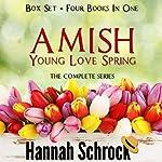 Amish Young Spring Love Box Set | Hannah Schrock