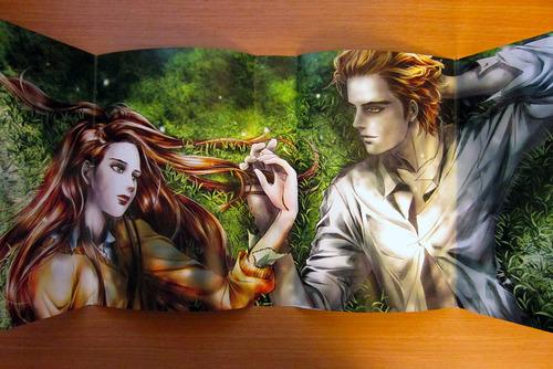 Amazon.com: Twilight: The Graphic Novel Collector's
